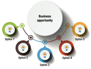 Business Opportunity Options-2